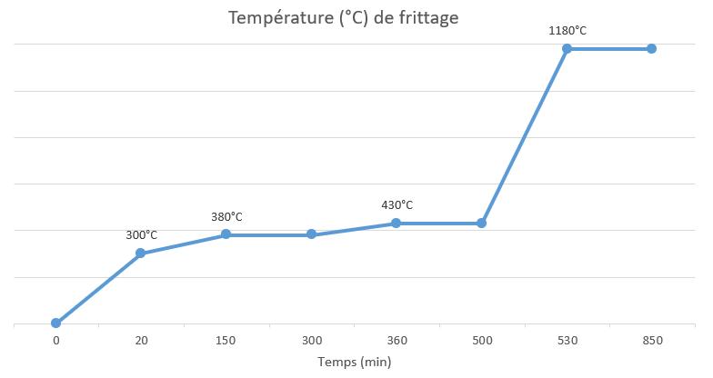 Grafique de deliantage et de frittage du nanovia mt inox 316L